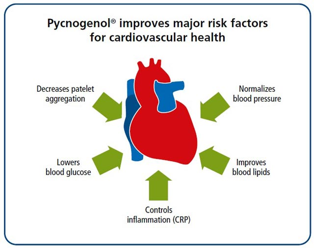 cardiovascular risk factors Several medical conditions can increase your risk for heart disease if you have one of these conditions, you can take steps to control it and lower your risk high blood pressure is a major risk factor for heart disease it is a medical condition that occurs when the pressure of the blood in your .