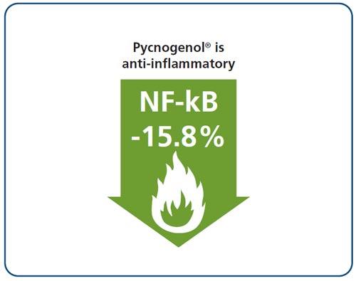 Flavogard Pycnogenol Reduced Menstrual Pain And Improved Endomteriosis
